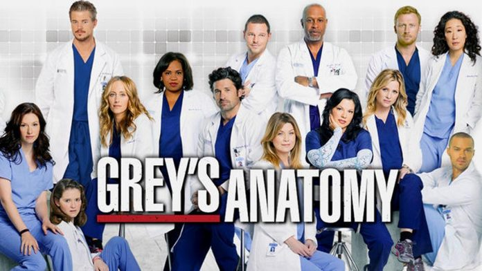 The Grey's Anatomy