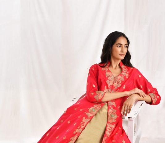 Festive Collection By Asha Gautam (13)